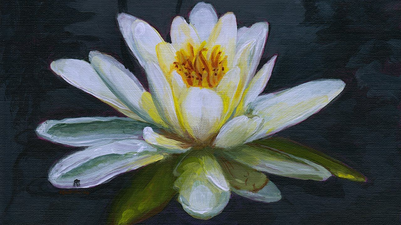 Painting a water lily in acrylics narrated youtube art painting a water lily in acrylics narrated youtube izmirmasajfo
