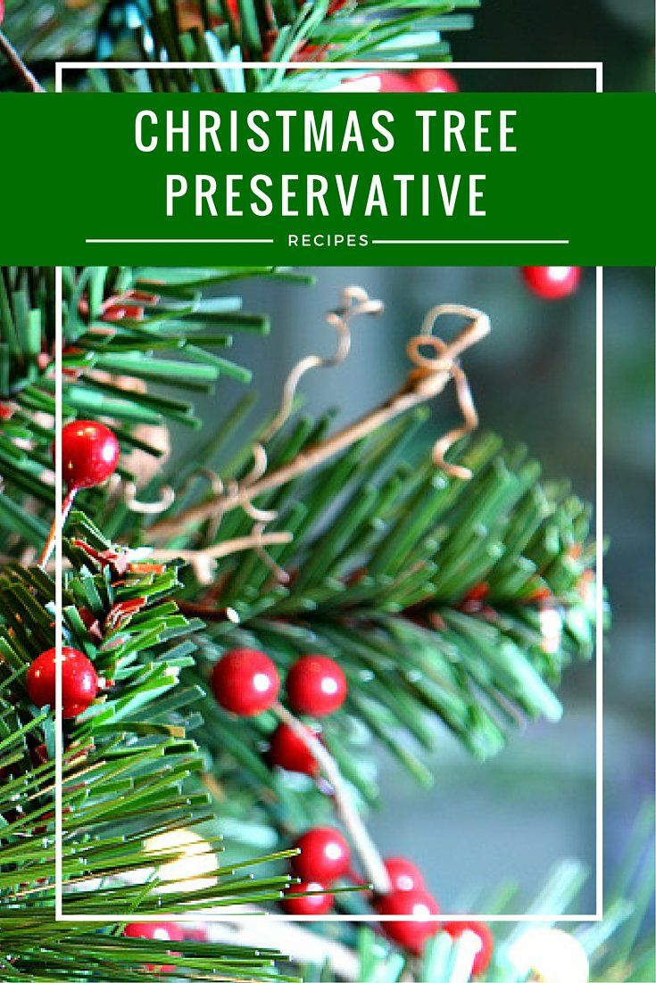 DIY Homemade Christmas Tree Preservative Recipes ...