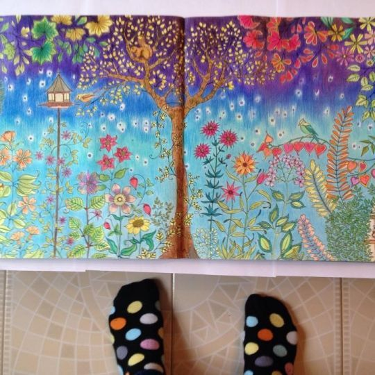 169 Best Johanna Basford Coloring Book Images On Pinterest