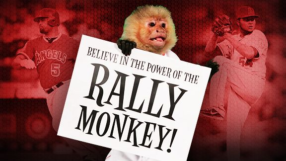 Image result for rally monkey pic