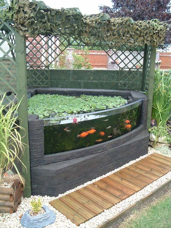 Fish pond with glass window google search for the home for Outdoor aquarium uk