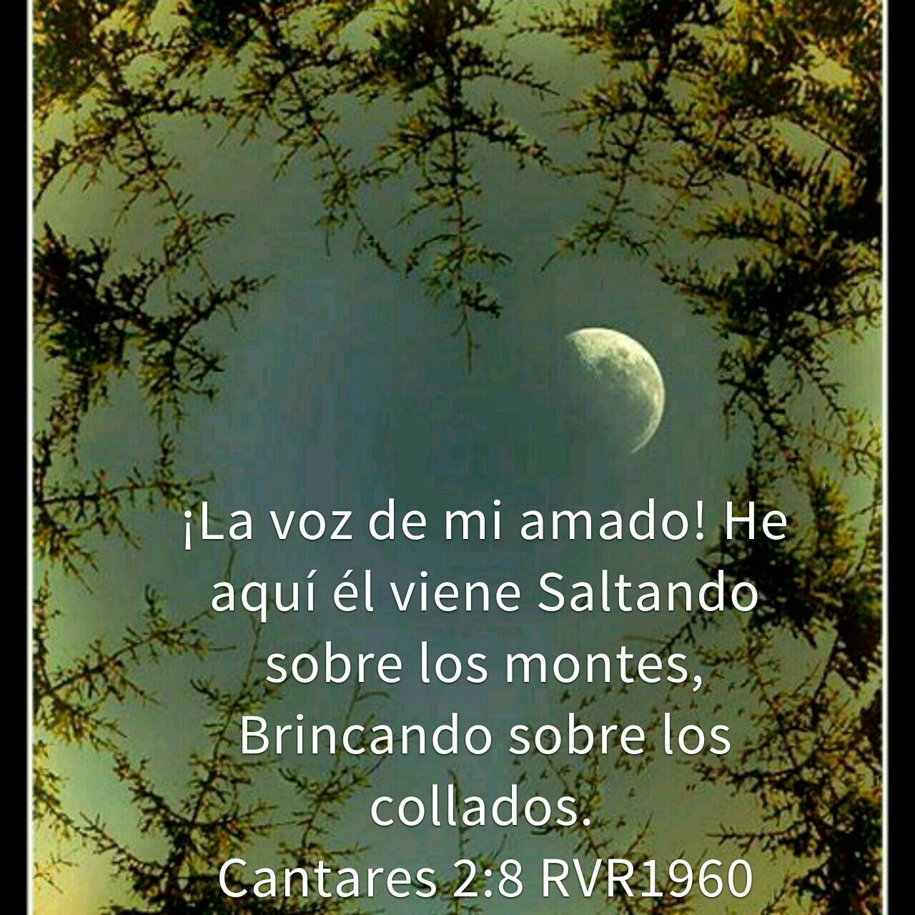 Pin By Mariana Ofelia On Dios Body Celestial Outdoor