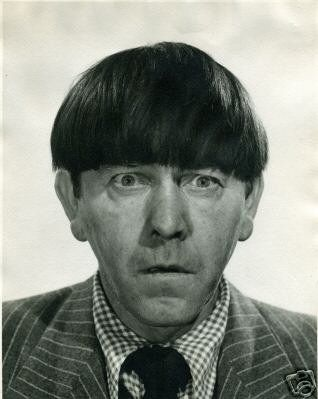 moe howard net worth