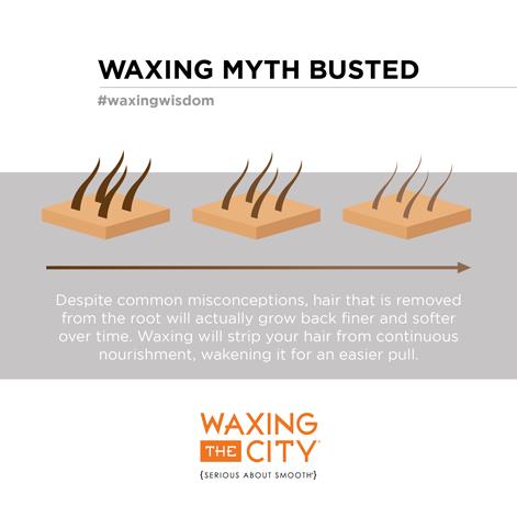 Pin By Waxing The City Katy On Waxing Wisdom Waxing Body Waxing Best Skin Care Routine