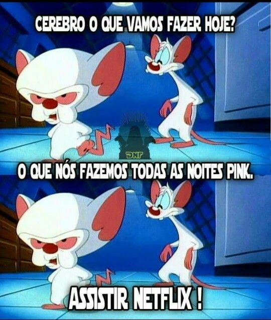 Pink E Cérebro Netflix Pink Eo Cerebro Pinterest Cerebro