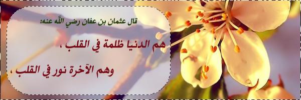 Https Islamic Images Org تواقيع اسلامية رائعة يا جمال الصور دي Http Islamic Images Org Islamic Images Lei Necklace Image