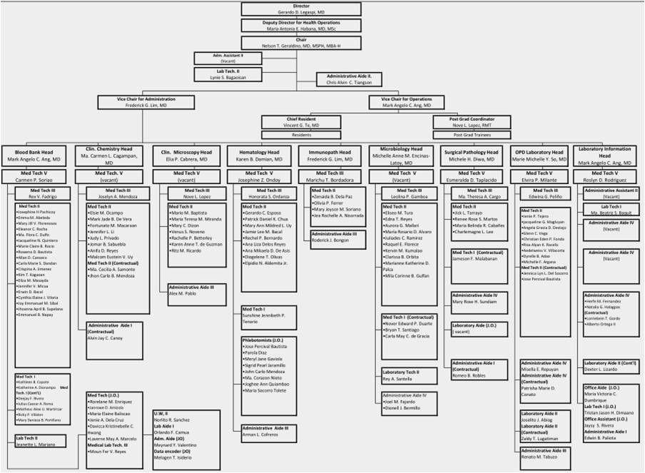Hospital Organizational Chart Check more at https://www