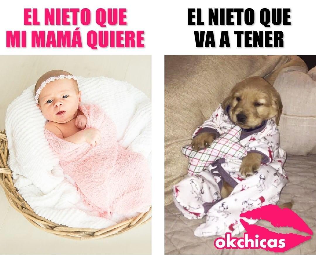El Bebe De Mama Memes Hilariantes Memes Memes Engracados