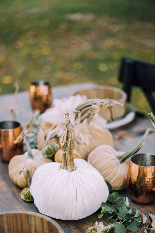 Wedding decorations outdoor october 2018 Velvet Pumpkin Outdoor Fall Tablescape in   Bloggers Best