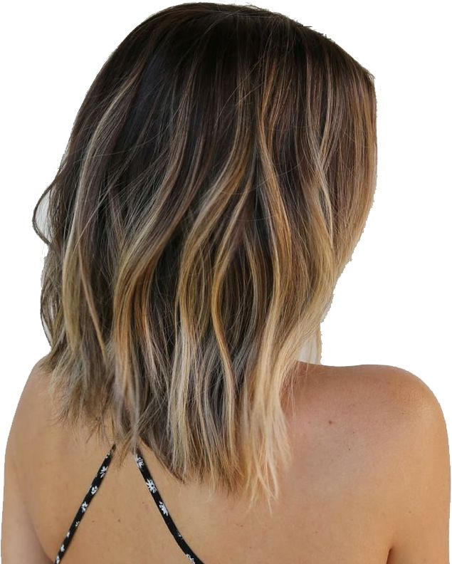 Back View Medium Bob Hairstyles With Blonde Highlights