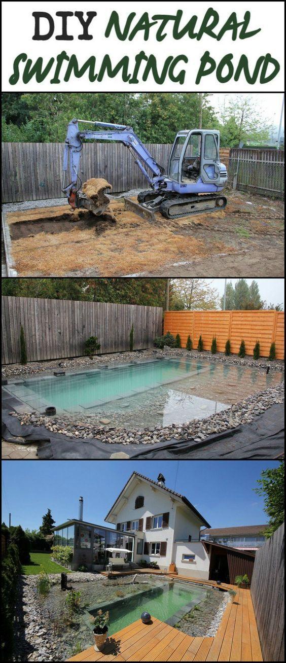 Diy Natural Swimming Pond Build Natural Swimming Ponds Swimming Pond Backyard Pool