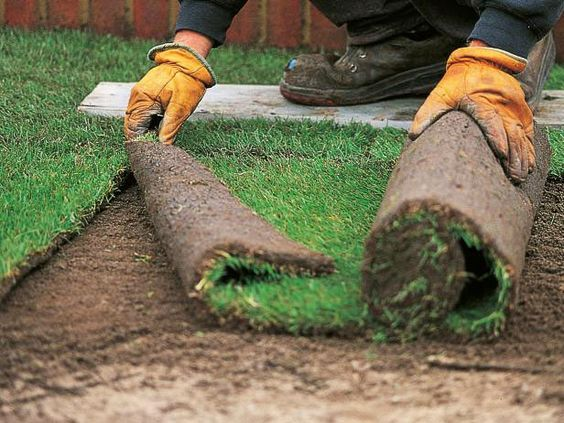 Diy How To Install Sod For A New Lawn Lawn And Garden How To