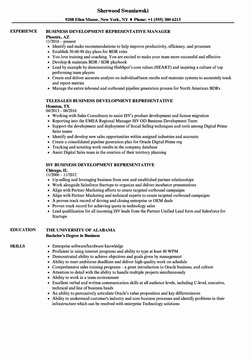 Business Development Representative Resume Elegant