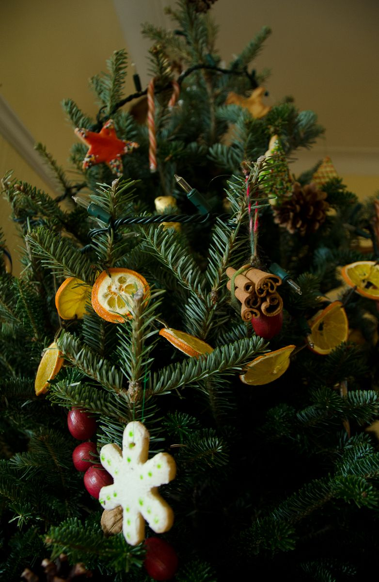 Edible and bio degradable Christmastree Decoration Ornaments