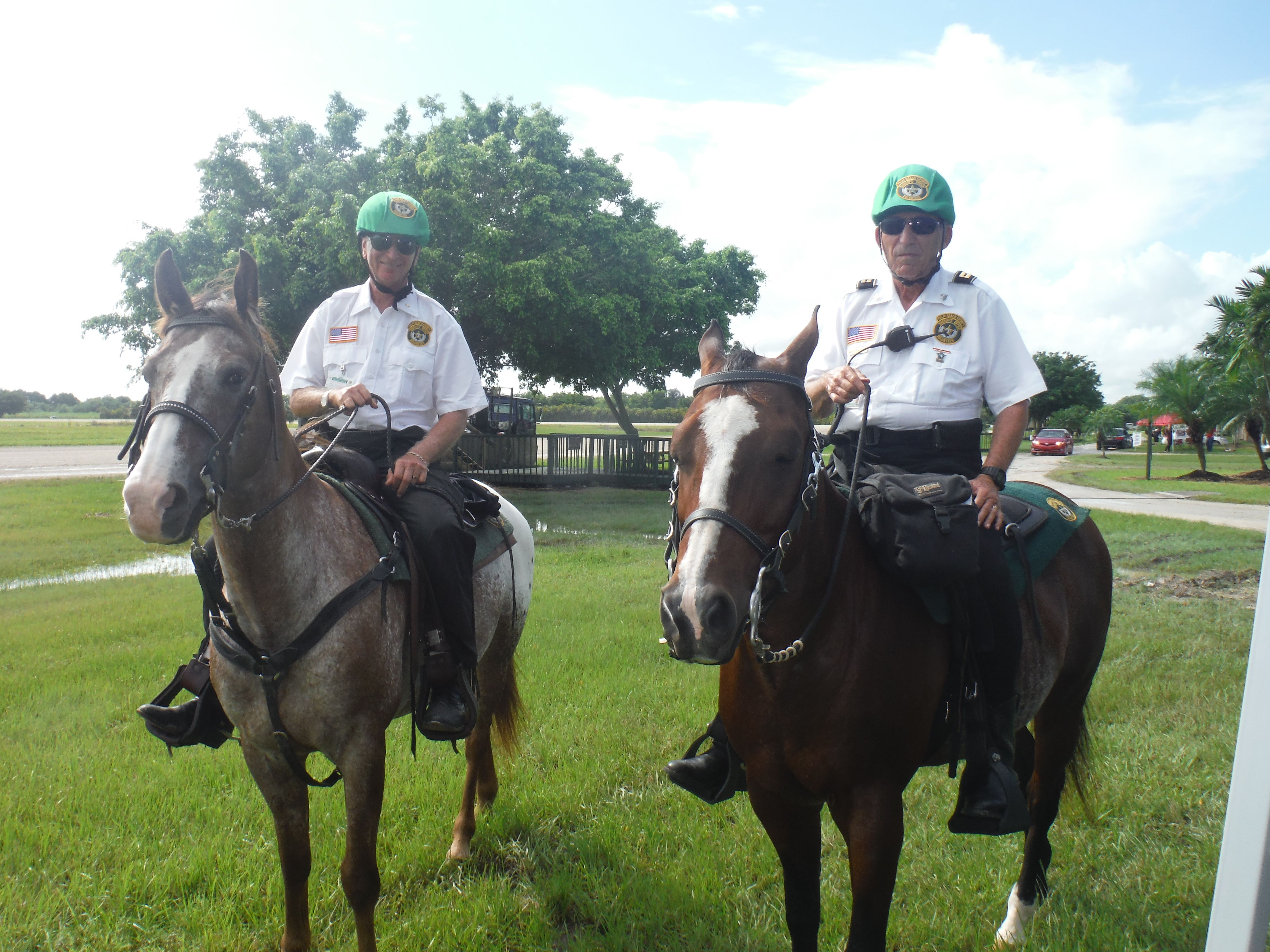 Equestrian Flea Market & Harness Racing