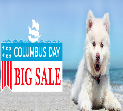 Get 12 Extra Off With Budget Vet Care Coupon Http Couponscops