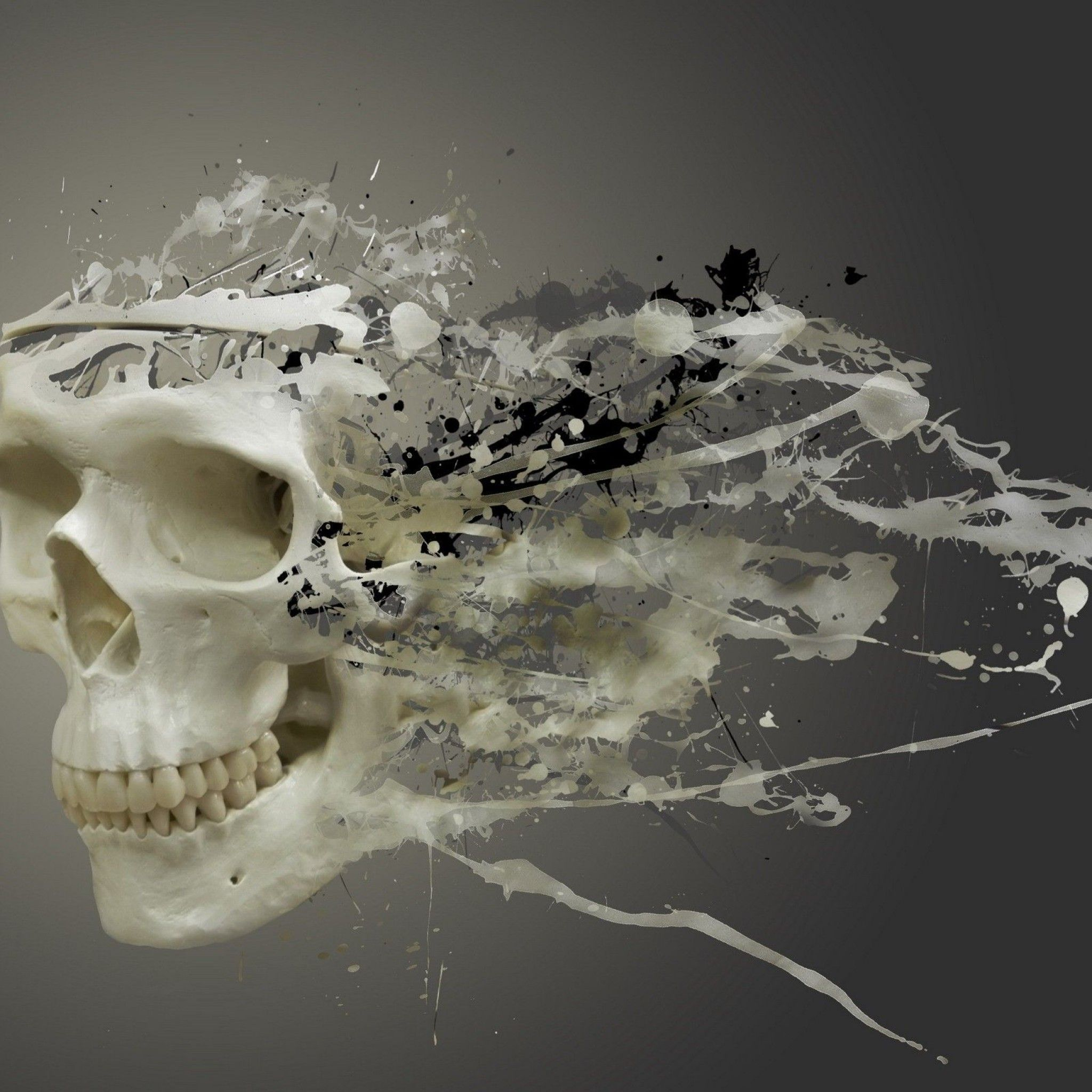 Abstract Skull Art IPad Wallpaper HD #iPad #wallpaper