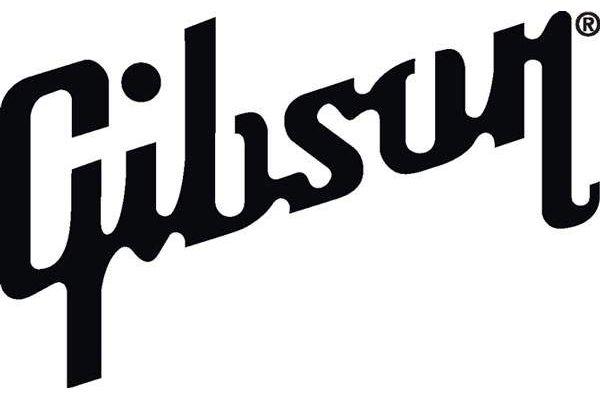 Pin On Guitar Company Logos