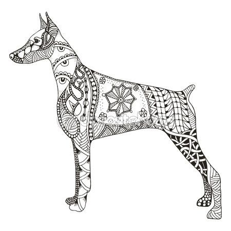 Doberman Pinscher Zentangle Stylized Vector Illustration Free