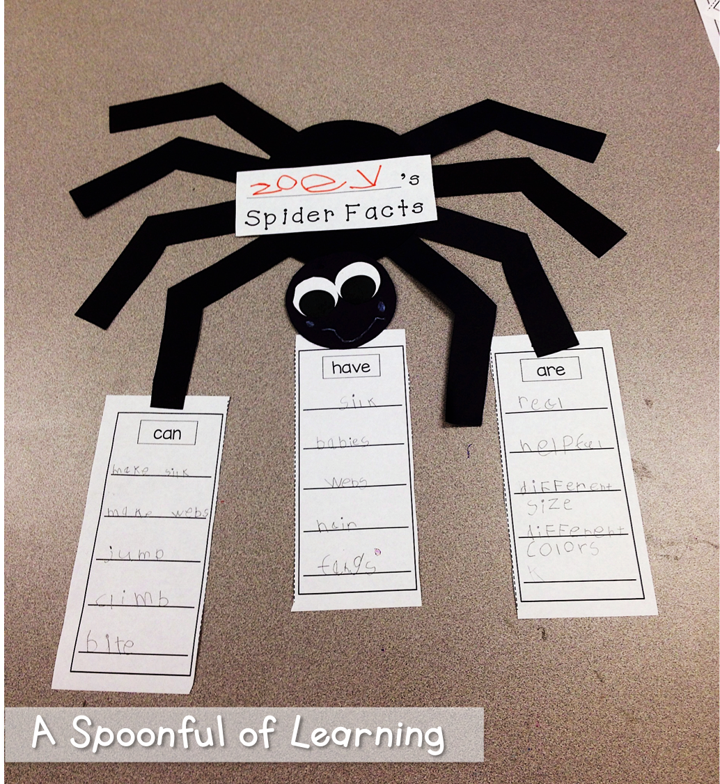 Spiders Unit Fun Math Literacy And Writing Activities