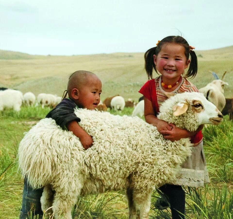 Монголия картинки для детей, рождения открытки