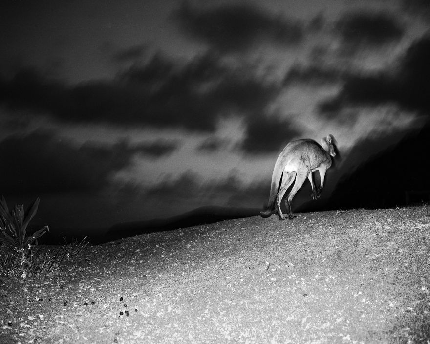 Trent Parke AUSTRALIA. New South Wales. Pebble Beach. 2007  Magnum Photos