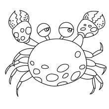 Crab Picture To Color Coloring Page Animal Coloring Pages