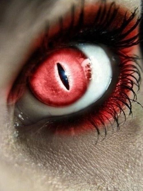 A Beautiful Collection Of Photoshopped Eyes 22 Photos Crazy