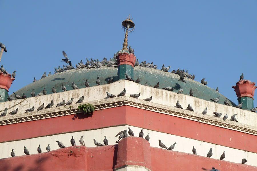 Mauj Darya Schrein in Lahore