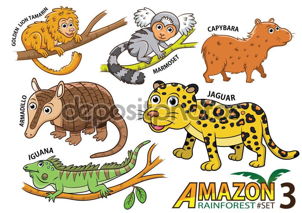 Conjunto De Dibujos Animados Cute Animales Y Aves En Las Areas De La Amazonia De America Del Sur Aislada Sobre Fon Cartoon Animals Cute Cartoon Animals Animals