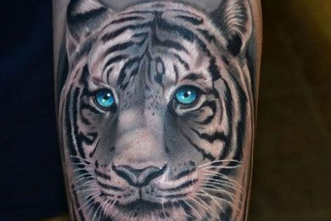 White Tiger Tattoo Designs 25 Majestic White Tiger Tattoo Ideas