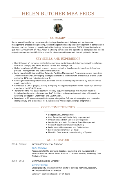 interim commercial director resume example