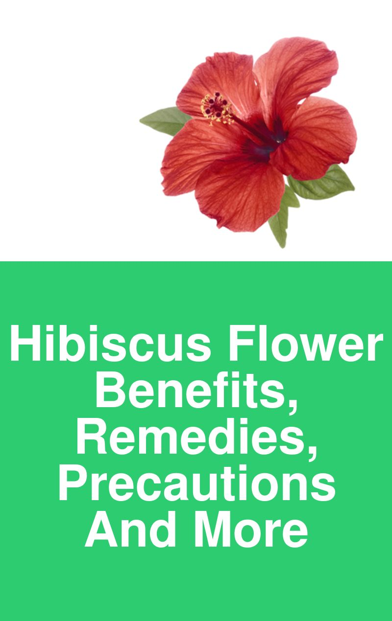 Hibiscus Flower Benefits Remedies Precautions And More Beauty