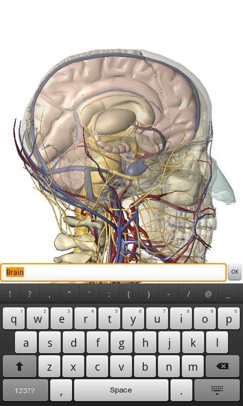 Visible Body 3d Anatomy Atlas Imgenes 4 Anatomia Humana