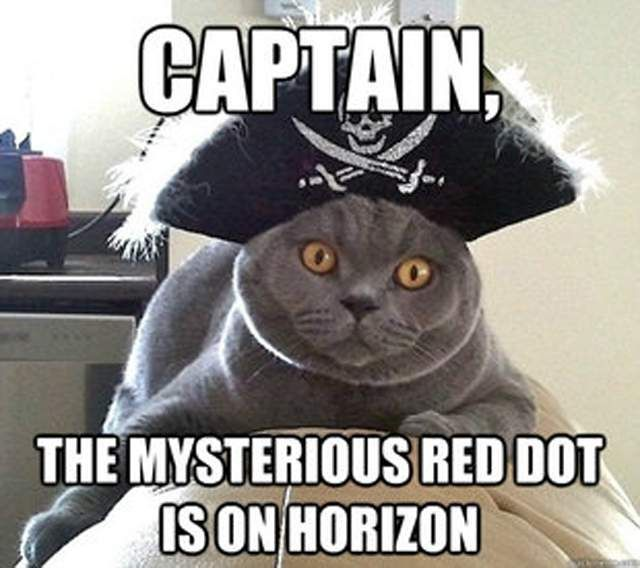 d429a24b289ceeef75b74274cad7b4eb image result for pirate memes pirate memes pinterest memes