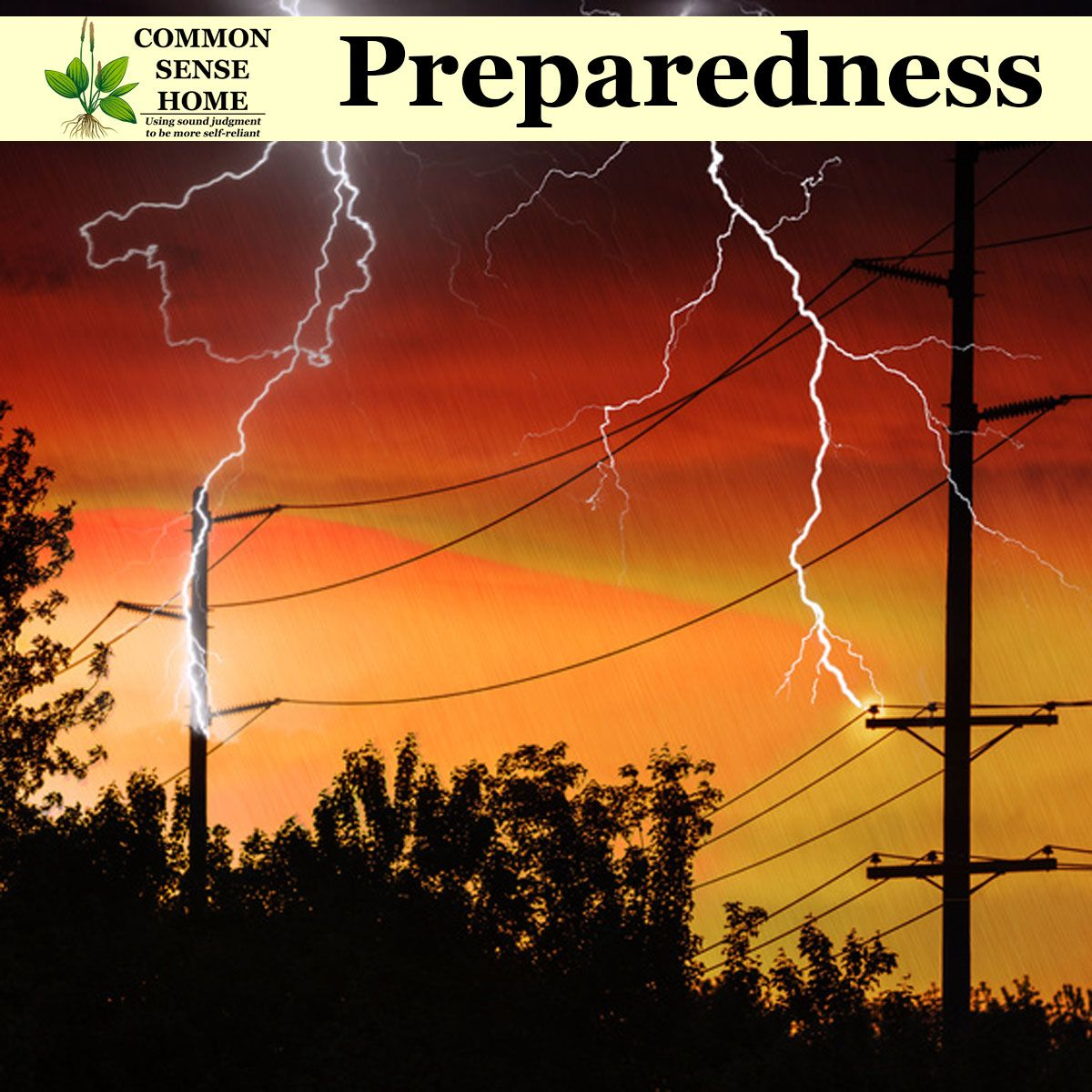 138 Best Common Sense Preparedness Images In 2020 Preparedness