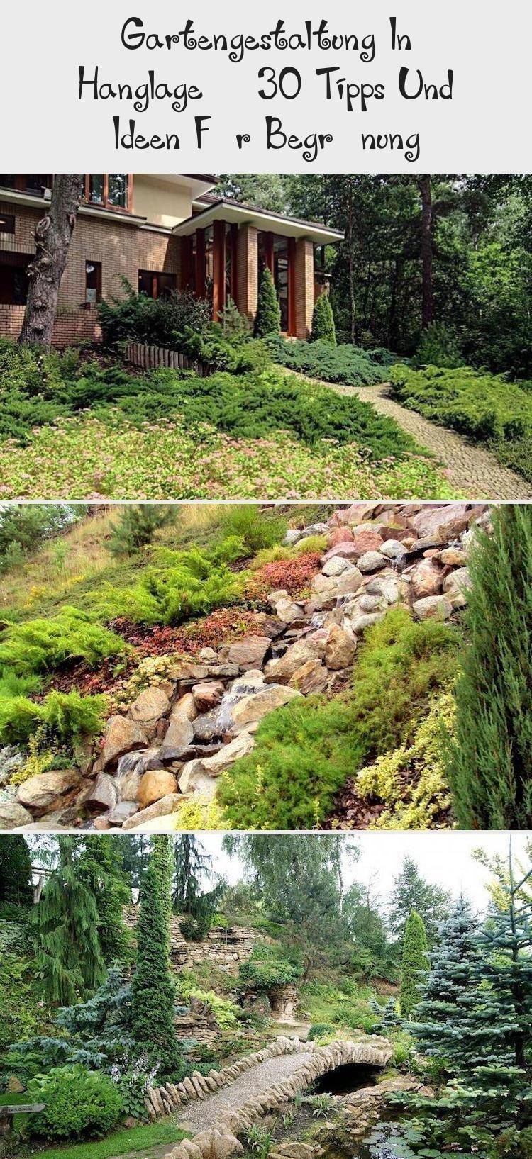 garten pflegeleicht #garden #garten # evergreen shrubs