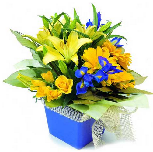 Yellow And Purple Flowers Birthday Arrangement Pictures Png