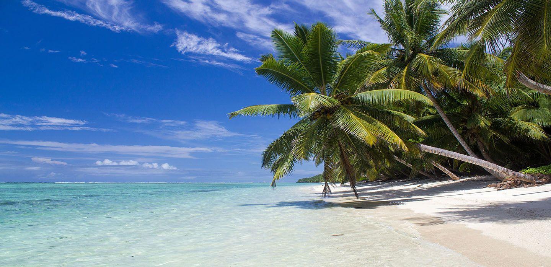 Île aux Nattes Beach Madagascar Flight Network's World