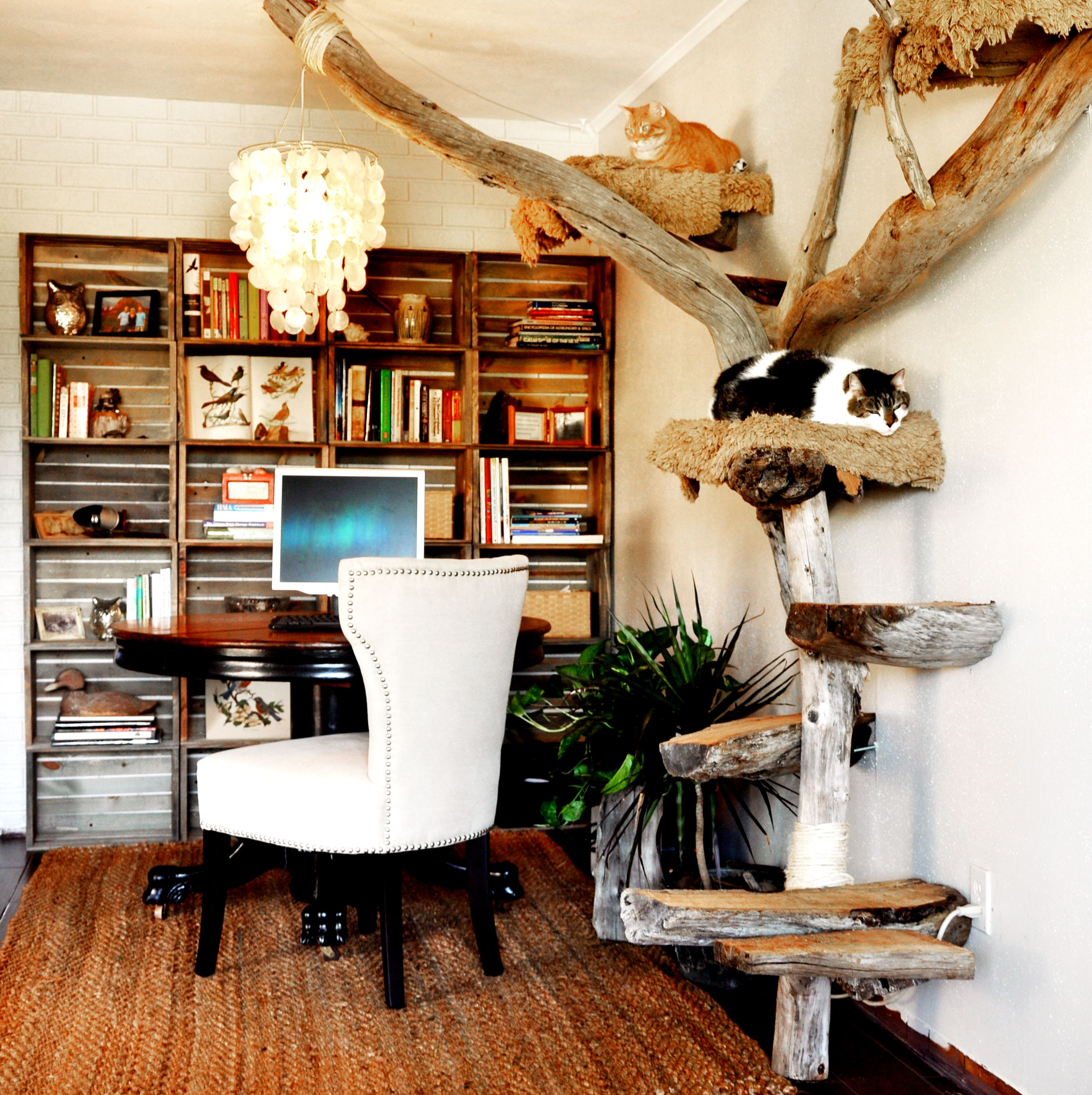 Another view of driftwood cat tree with office space and