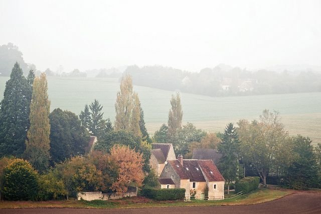 Misty morning french countryside countryside and france for French countryside homes