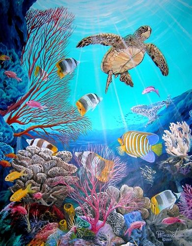 Pin By Gail Tench On Under Sea Murals In 2018