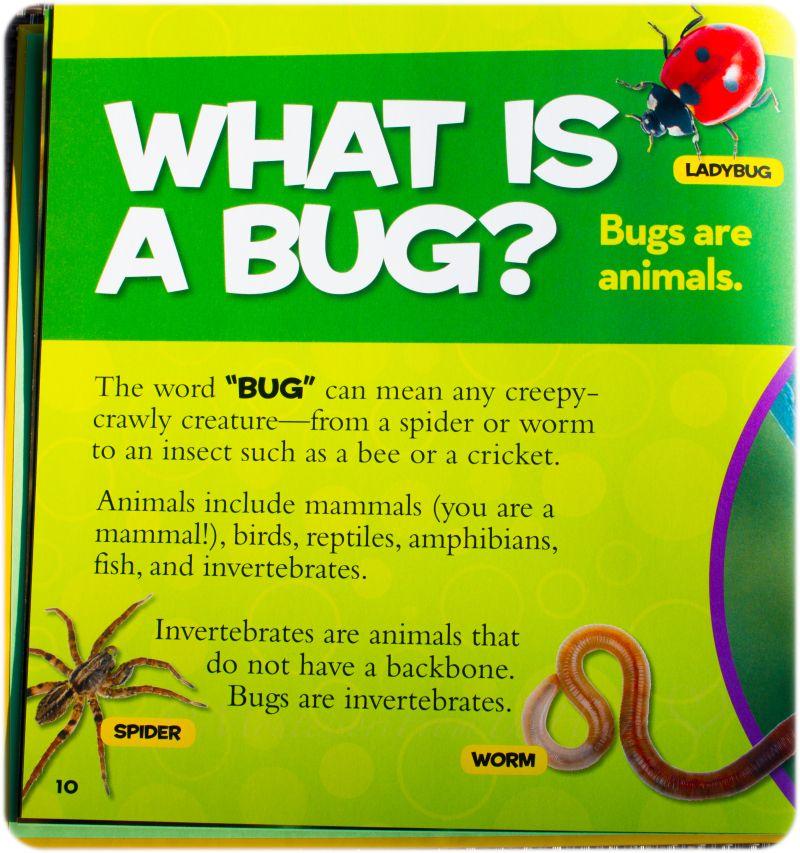 Earthworms Unit Study Zoology Study Unit Preschool Kids