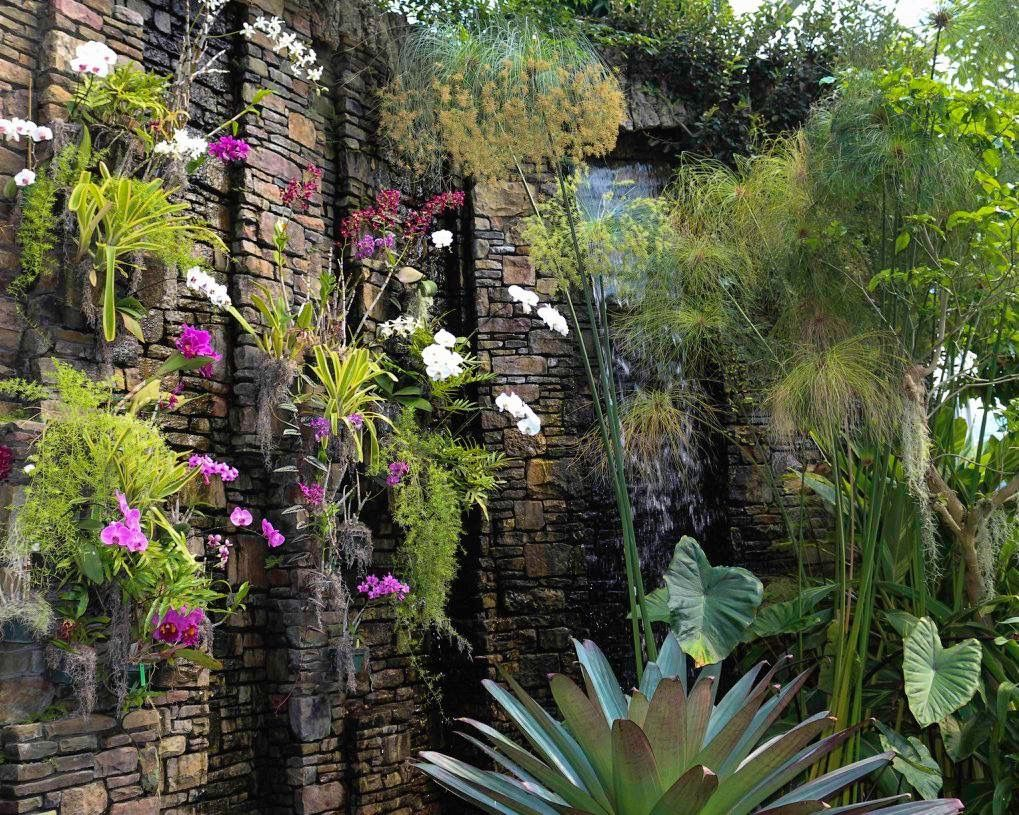 Orchid Wall At Daniel Stowe Botanical Garden, Belmont, NC September, 2015