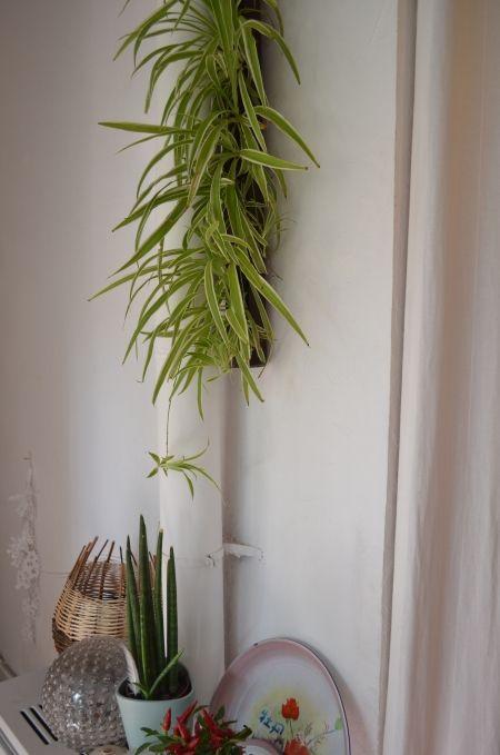Reciclaje de tuberias jardinera vertical con una tubería reciclada - jardineras verticales