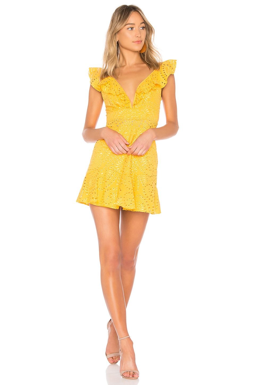 Karina grimaldi connie dress in yellow eyelet want pinterest