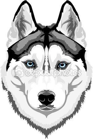 Husky siberiano — Vector stock © skvortsova #64627531 | Husky Love ...