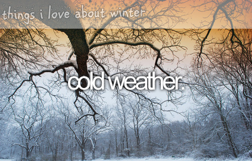 things i love about winter: Photo