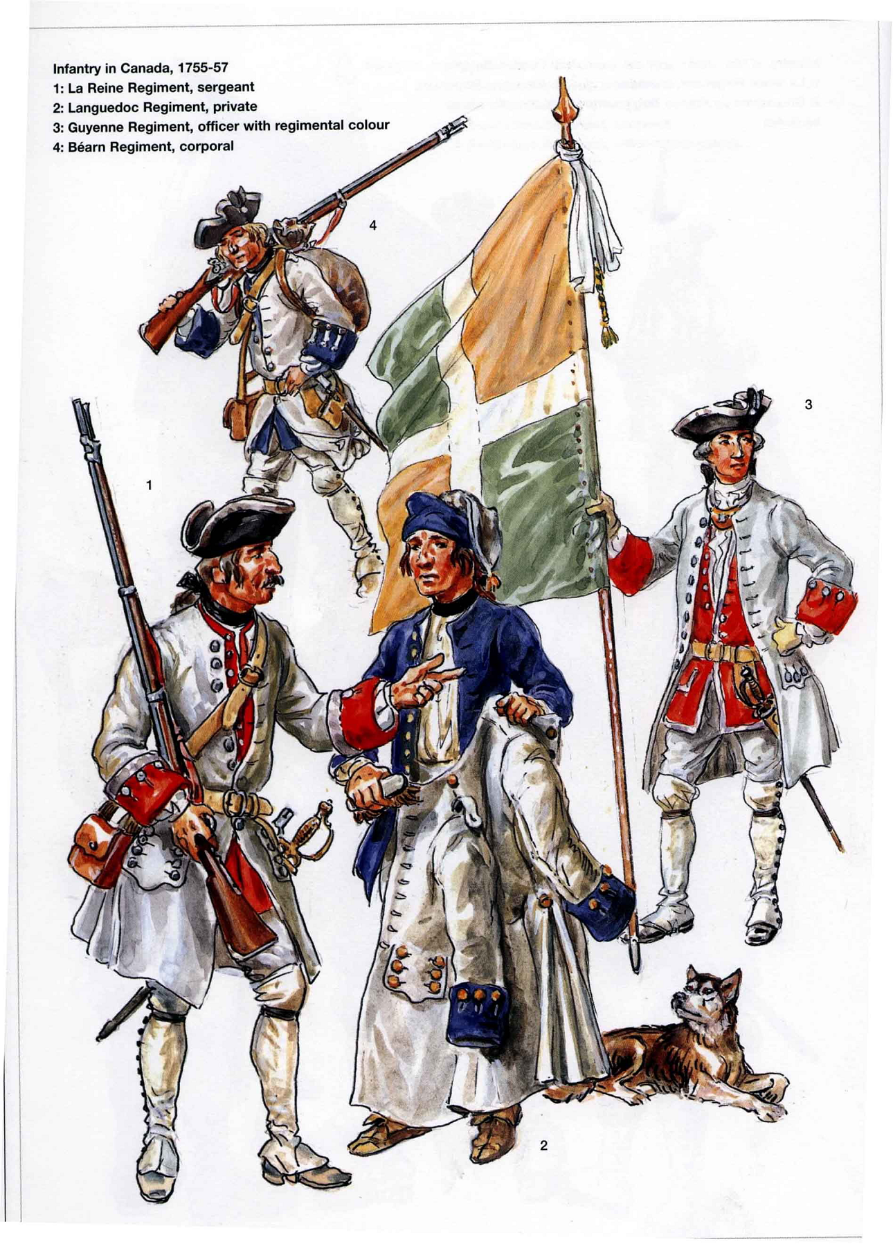 French Infantry In Canada