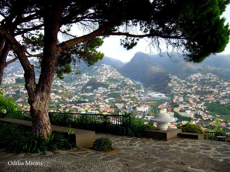 Pico dos Barcelos - Madeira